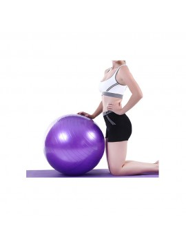 Yoga Workout Fitness Ball